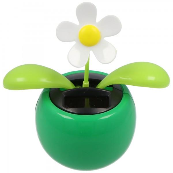Solar Wackelblume Dancing Flower mit wackelnden Blättern und Blüte nur sortiert lieferbar