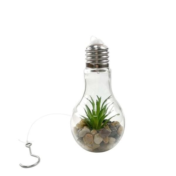 LED Dekorationslicht Glühbirne mit Timerfinktion, the LED DECO LIGHT BULB DARIA, Timer Function Warm white 2700K-3200K